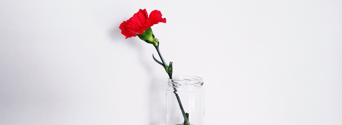 Red flower in a jar
