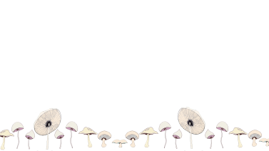 Mushroom wallpaper pattern for devices