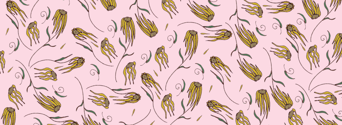 black eyed susan pattern for device wallpaper with pink background